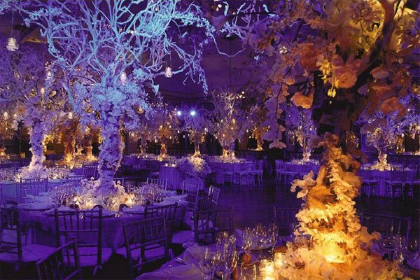 mariage-45000-photographe-interieur-arbres